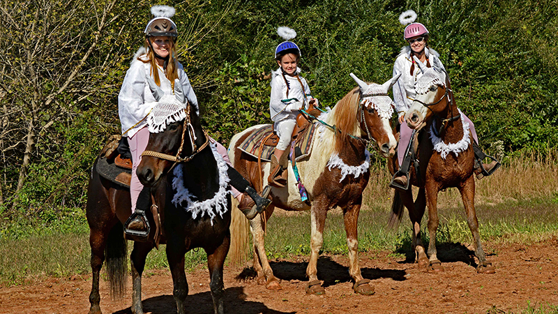 Trail Rides Nc, Sc, Va 2020 For Halloween Green Creek Hounds Halloween Hunter Pace & Trail Ride results
